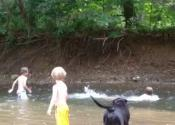 Swimming on the Little Cacapon